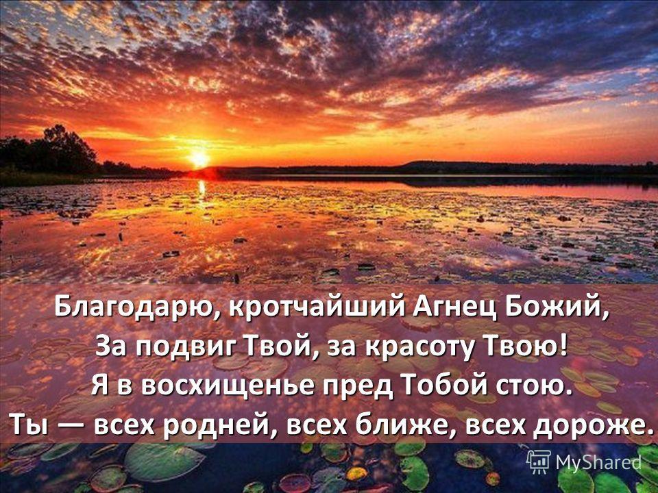 Благодарю, кротчайший Агнец Божий, За подвиг Твой, за красоту Твою! Я в восхищенье пред Тобой стою. Ты всех родней, всех ближе, всех дороже.