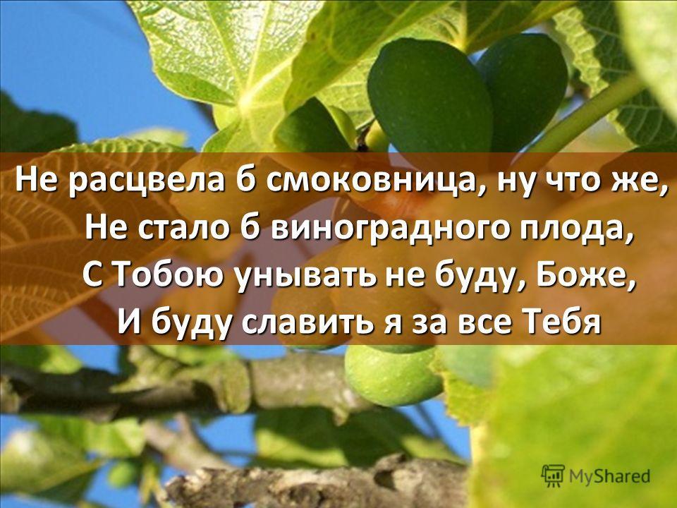 Не расцвела б смоковница, ну что же, Не стало б виноградного плода, С Тобою унывать не буду, Боже, И буду славить я за все Тебя