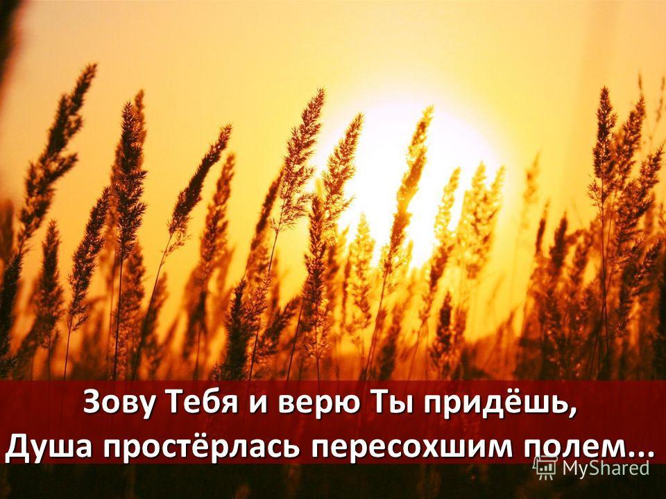 Зову Тебя и верю Ты придёшь, Душа простёрлась пересохшим полем...