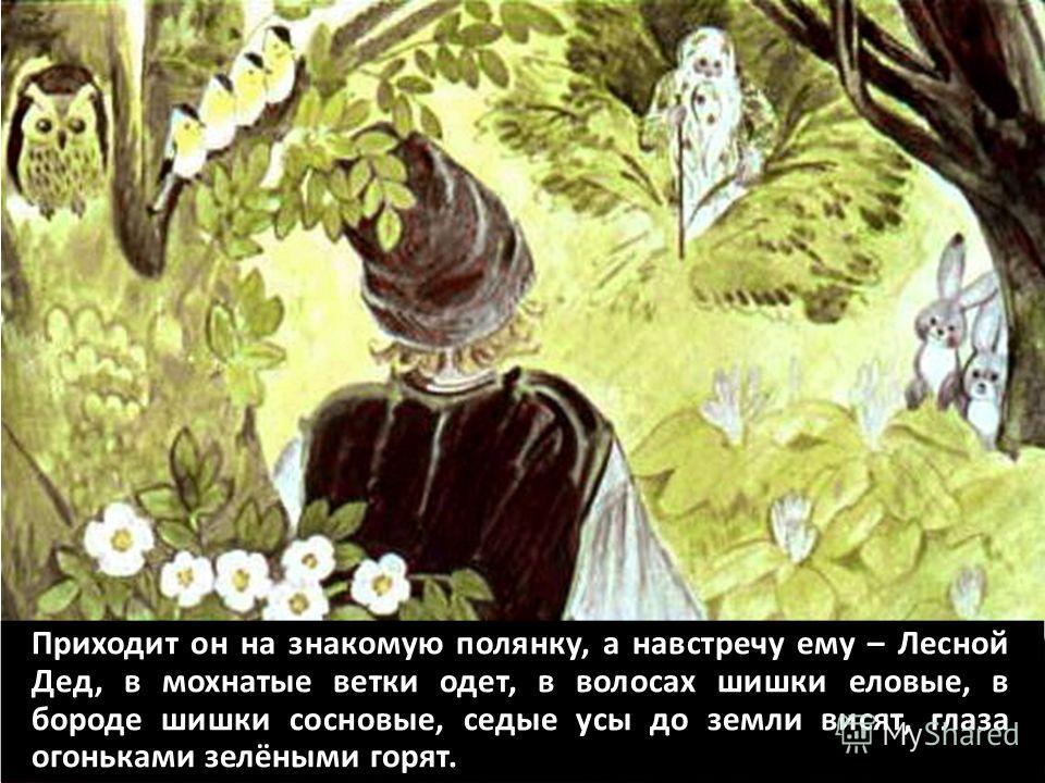 Приходит он на знакомую полянку, а навстречу ему – Лесной Дед, в мохнатые ветки одет, в волосах шишки еловые, в бороде шишки сосновые, седые усы до земли висят, глаза огоньками зелёными горят.