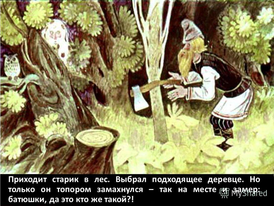 Приходит старик в лес. Выбрал подходящее деревце. Но только он топором замахнулся – так на месте и замер: батюшки, да это кто же такой?!