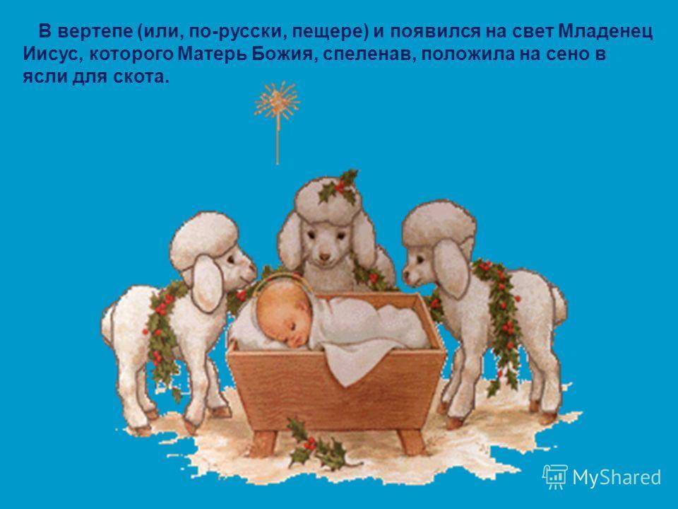 В вертепе (или, по-русски, пещере) и появился на свет Младенец Иисус, которого Матерь Божия, спеленав, положила на сено в ясли для скота.