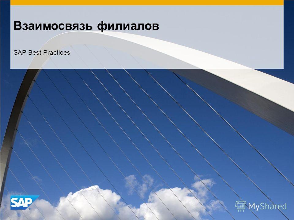 Взаимосвязь филиалов SAP Best Practices