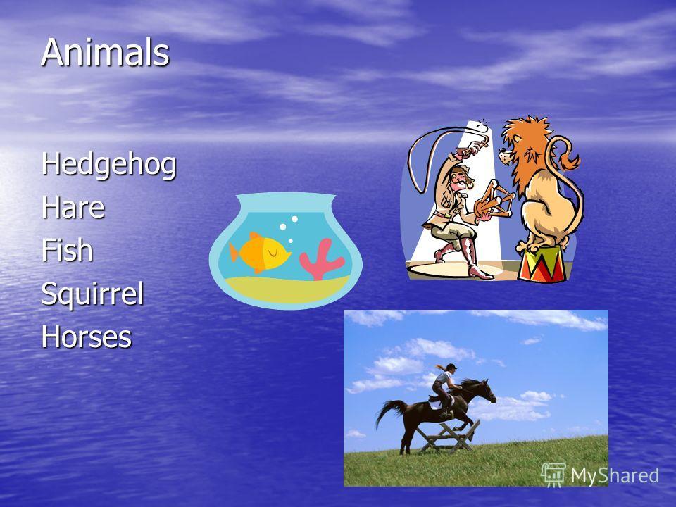 Animals HedgehogHareFishSquirrelHorses