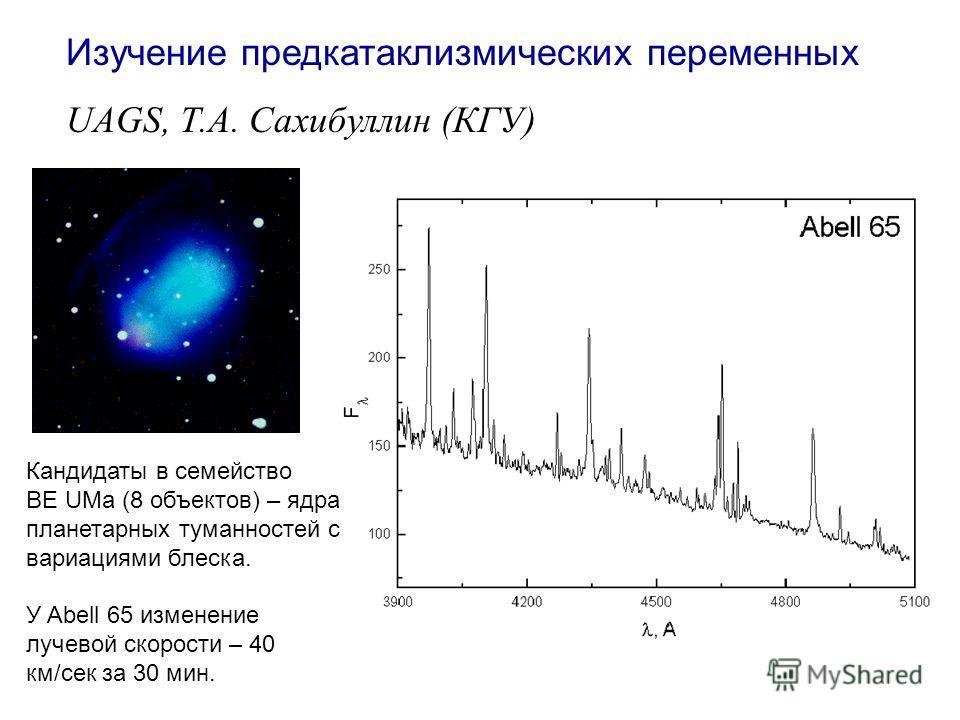 Изучение предкатаклизмических переменных UAGS, Т.А. Сахибуллин (КГУ) Кандидаты в семейство BE UMa (8 объектов) – ядра планетарных туманностей с вариациями блеска. У Abell 65 изменение лучевой скорости – 40 км/сек за 30 мин.