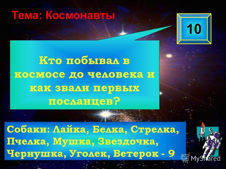 Кто побывал в космосе до человека и как звали первых посланцев? 10 Тема: Космонавты Собаки: Лайка, Белка, Стрелка, Пчелка, Мушка, Звездочка, Чернушка, Уголек, Ветерок - 9