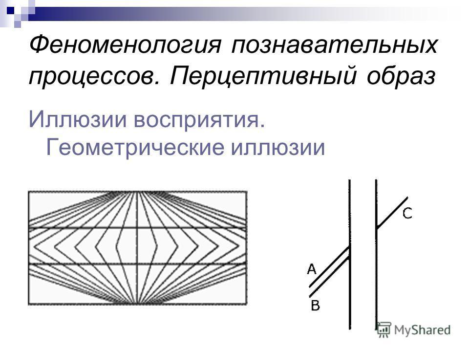 Иллюзии восприятия. Геометрические иллюзии