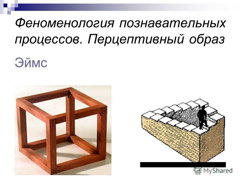 Феноменология познавательных процессов. Перцептивный образ Эймс