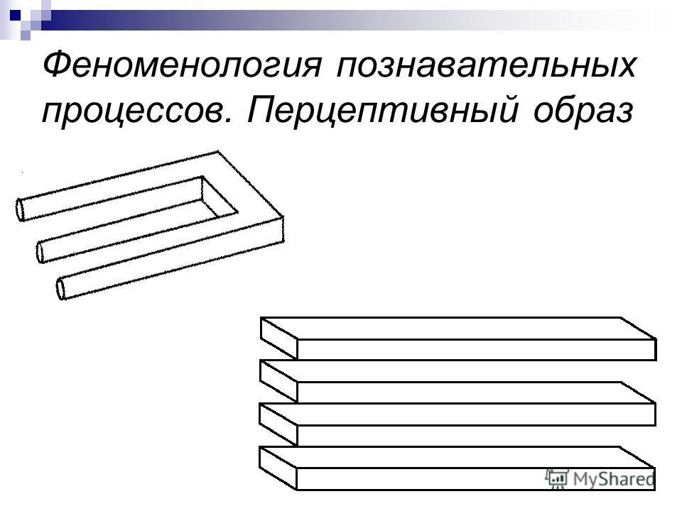Феноменология познавательных процессов. Перцептивный образ