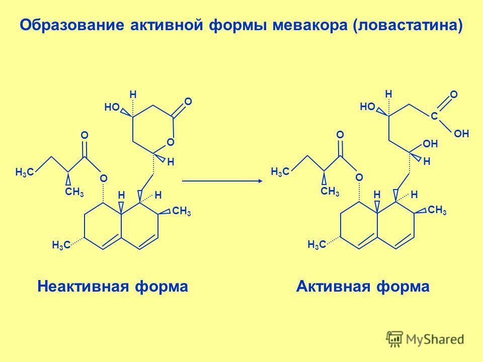 Образование активной формы мевакора (ловастатина) СН 3 НН Н3СН3С О Н НО Н О О О Н3СН3С СН 3 НН Н3СН3С ОН Н НО Н О О О Н3СН3С С ОН Неактивная формаАктивная форма