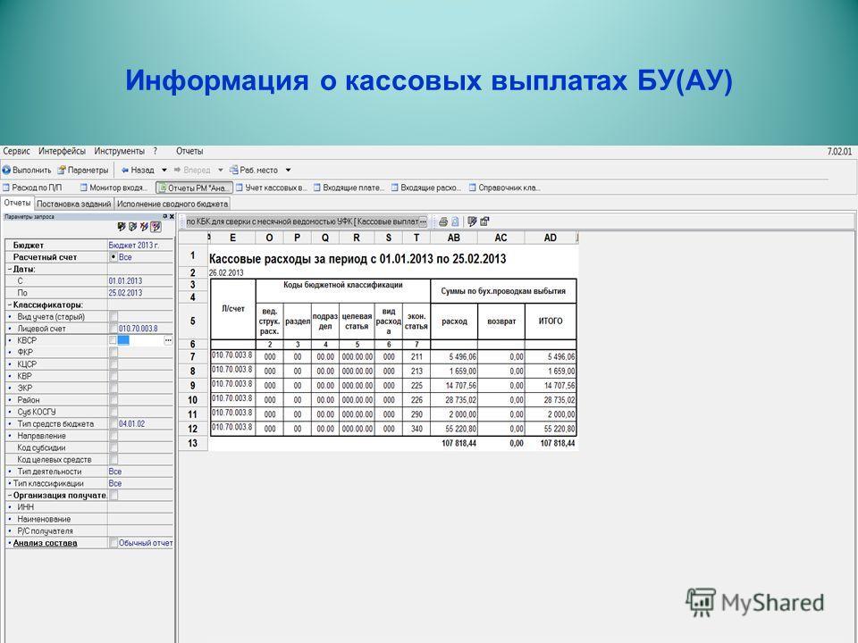 Информация о кассовых выплатах БУ(АУ)