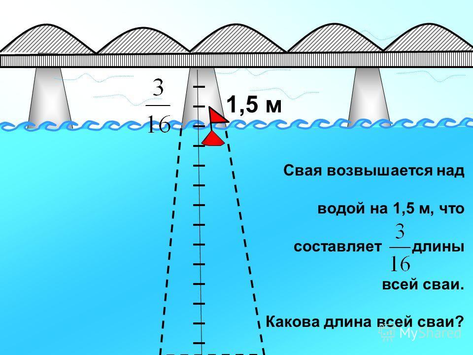 1,5 м Свая возвышается над водой на 1,5 м, что составляет длины всей сваи. Какова длина всей сваи?