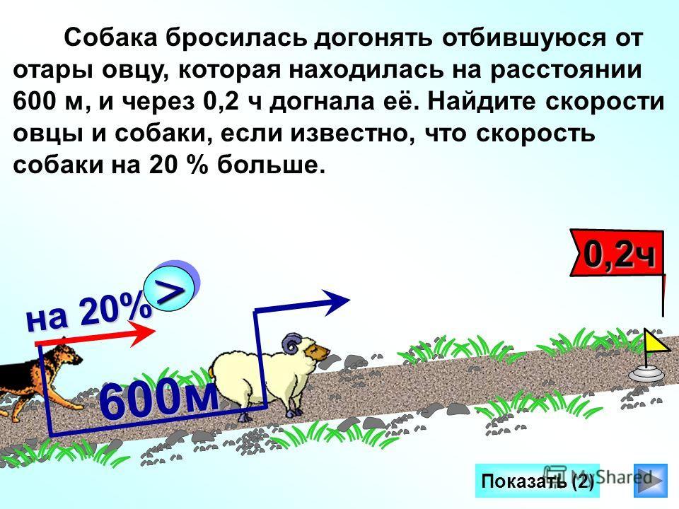 600м >> на 20% 0,2ч 0,2ч Собака бросилась догонять отбившуюся от отары овцу, которая находилась на расстоянии 600 м, и через 0,2 ч догнала её. Найдите скорости овцы и собаки, если известно, что скорость собаки на 20 % больше.
