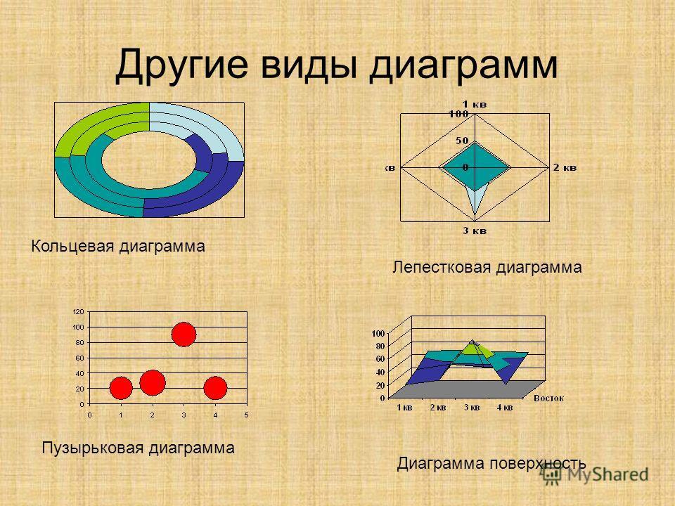 Другие виды диаграмм Кольцевая диаграмма Лепестковая диаграмма Пузырьковая диаграмма Диаграмма поверхность