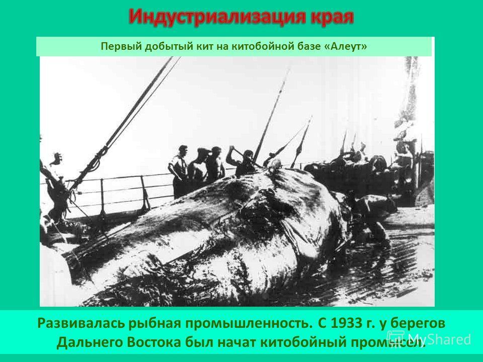 Развивалась рыбная промышленность. С 1933 г. у берегов Дальнего Востока был начат китобойный промысел. Первый добытый кит на китобойной базе «Алеут»