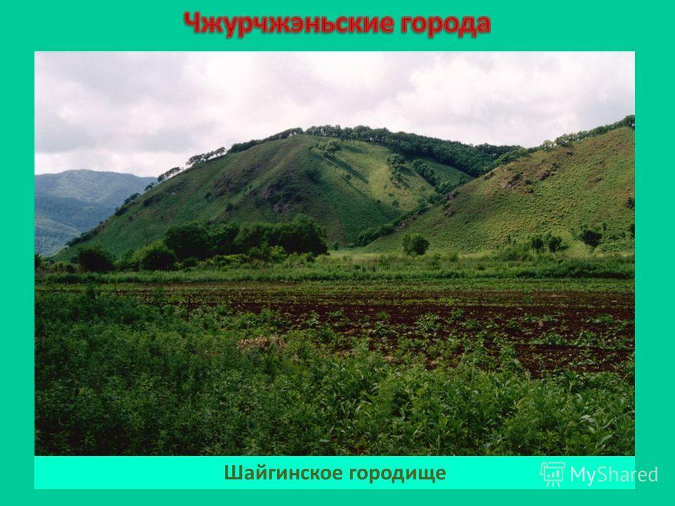Шайгинское городище