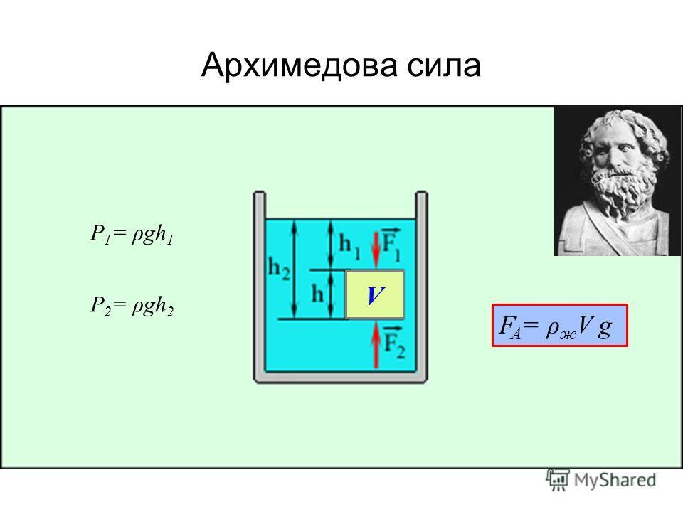 Архимедова сила P 1 = ρgh 1 P 2 = ρgh 2 V F A = ρ ж V g