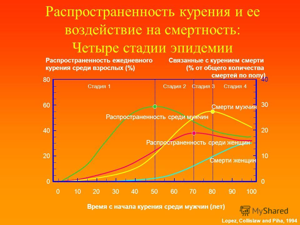 Lopez, Collislaw and Piha, 1994 Распространенность курения и ее воздействие на смертность: Четыре стадии эпидемии Распространенность ежедневного курения среди взрослых (%) Связанные с курением смерти (% от общего количества смертей по полу) Стадия 4С