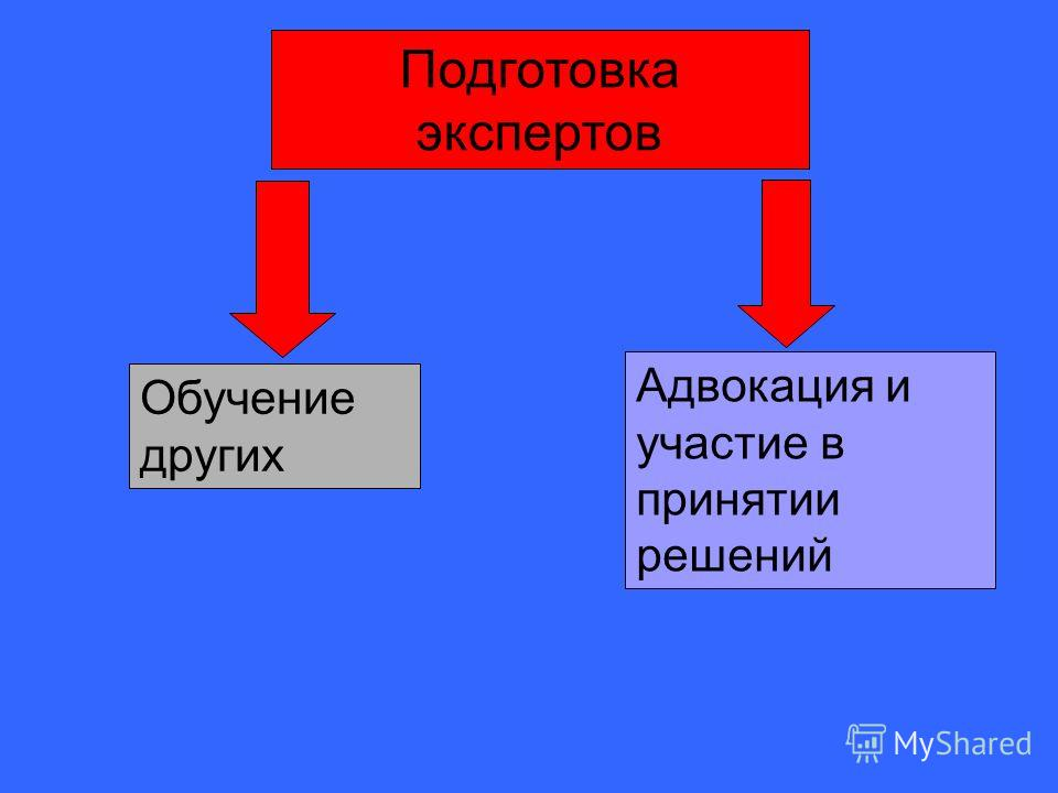 Подготовка экспертов Обучение других Адвокация и участие в принятии решений