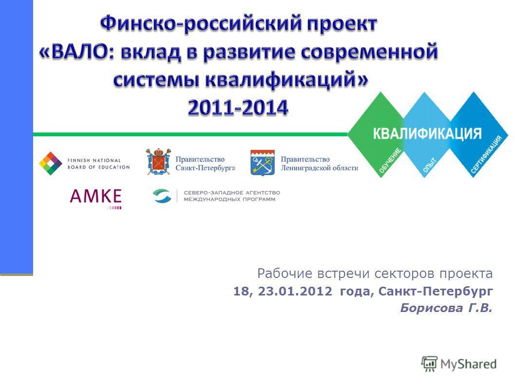 Рабочие встречи секторов проекта 18, 23.01.2012 года, Санкт-Петербург Борисова Г.В.