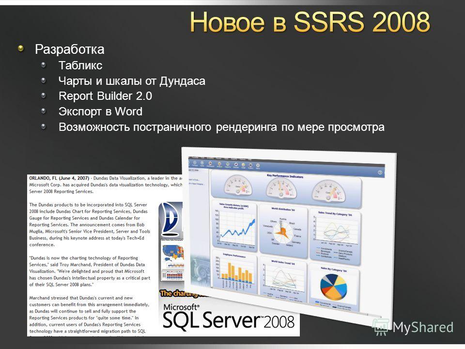 Разработка Табликс Чарты и шкалы от Дундаса Report Builder 2.0 Экспорт в Word Возможность постраничного рендеринга по мере просмотра