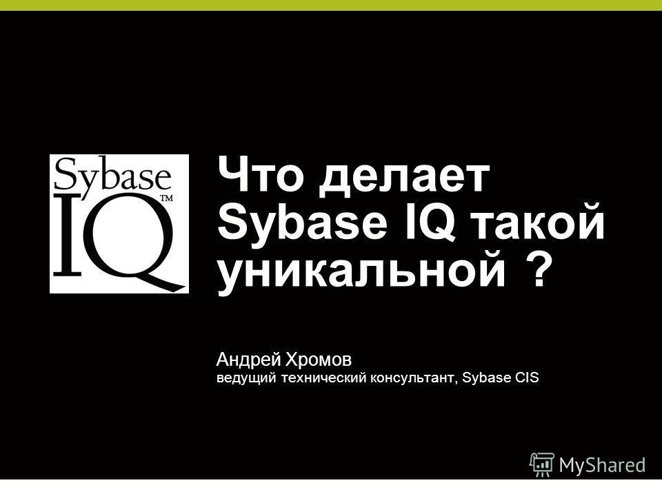 Что делает Sybase IQ такой уникальной ? Андрей Хромов ведущий технический консультант, Sybase CIS