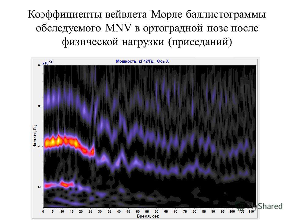 Коэффициенты вейвлета Морле баллистограммы обследуемого MNV в ортоградной позе после физической нагрузки (приседаний)