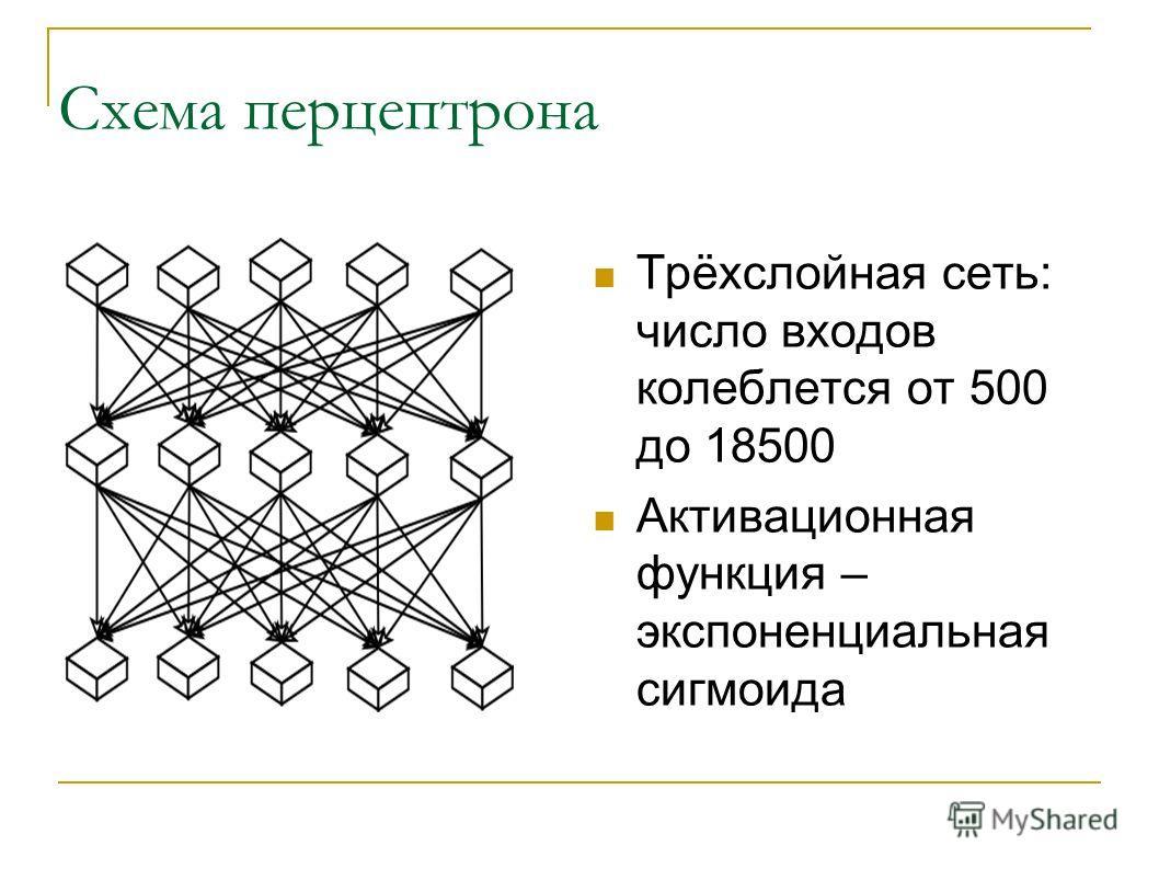 Схема перцептрона Трёхслойная сеть: число входов колеблется от 500 до 18500 Активационная функция – экспоненциальная сигмоида