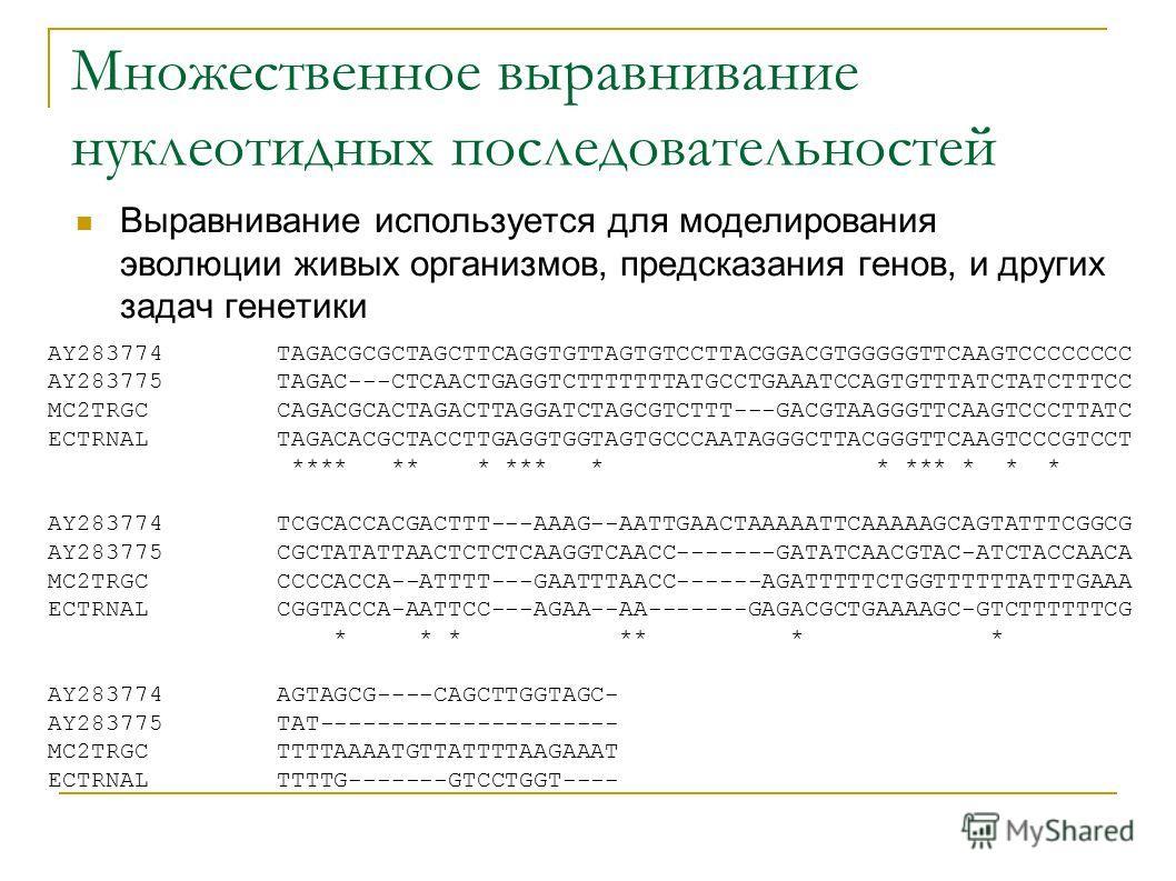 Множественное выравнивание нуклеотидных последовательностей Выравнивание используется для моделирования эволюции живых организмов, предсказания генов, и других задач генетики AY283774 TAGACGCGCTAGCTTCAGGTGTTAGTGTCCTTACGGACGTGGGGGTTCAAGTCCCCCCCC AY283
