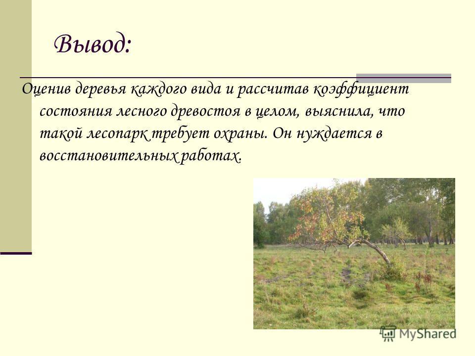 Вывод: Оценив деревья каждого вида и рассчитав коэффициент состояния лесного древостоя в целом, выяснила, что такой лесопарк требует охраны. Он нуждается в восстановительных работах.