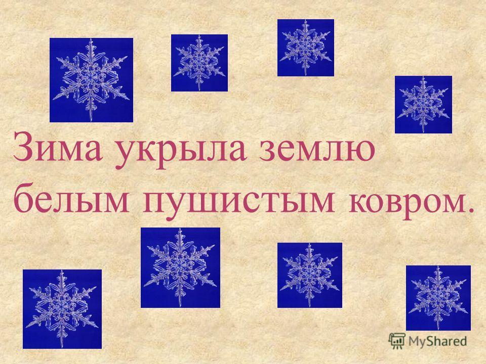 Зима укрыла землю белым пушистым ковром.