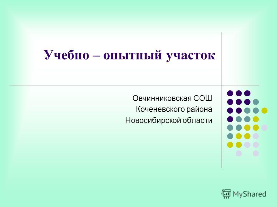 Учебно – опытный участок Овчинниковская СОШ Коченёвского района Новосибирской области
