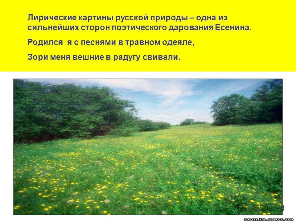 Лирические картины русской природы – одна из сильнейших сторон поэтического дарования Есенина. Родился я с песнями в травном одеяле, Зори меня вешние в радугу свивали.