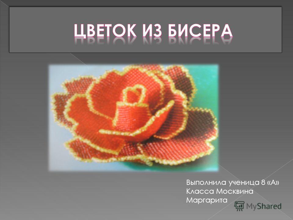 Выполнила ученица 8 «А» Класса Москвина Маргарита