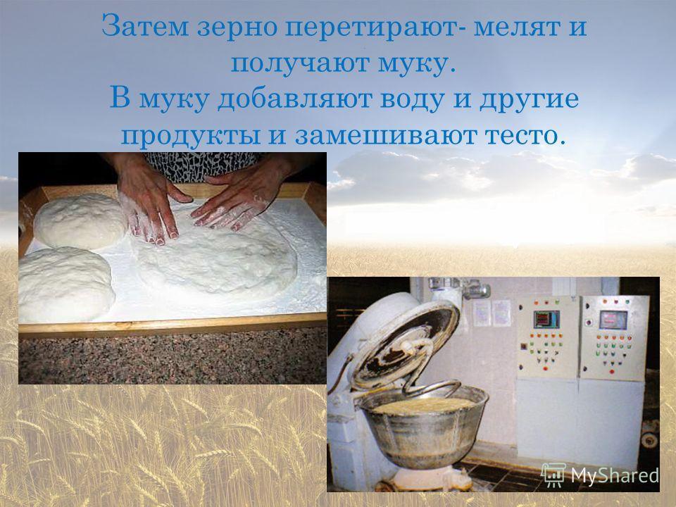 Затем зерно перетирают- мелят и получают муку. В муку добавляют воду и другие продукты и замешивают тесто.
