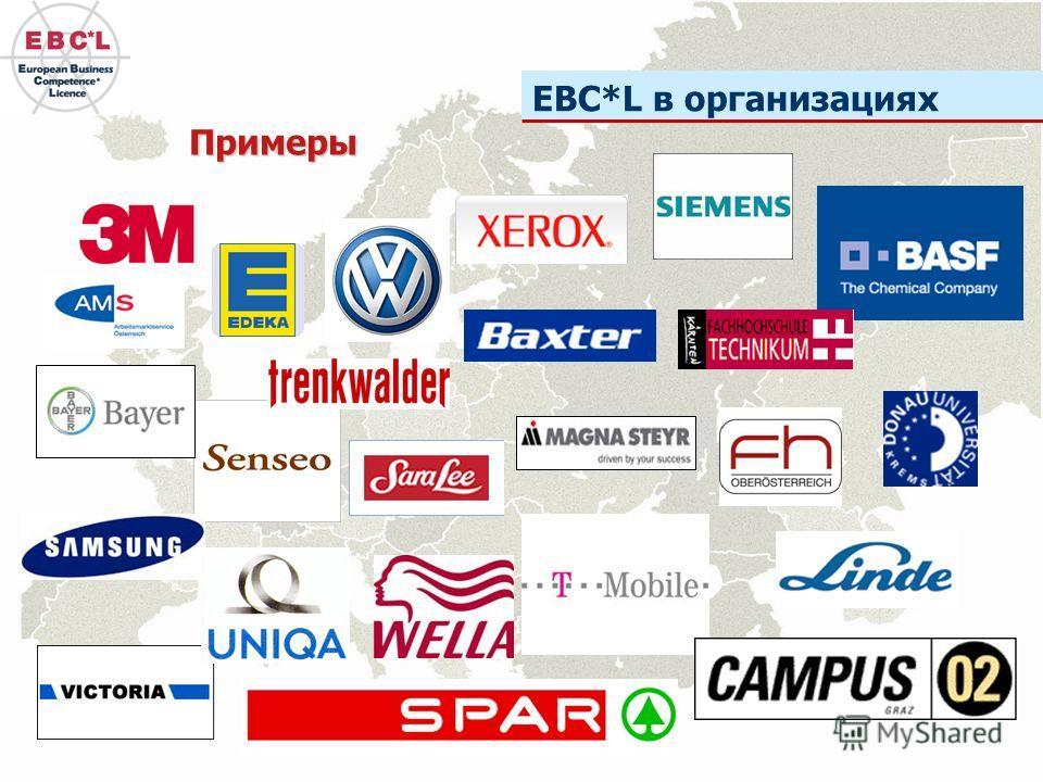 EBC*L в организациях Примеры