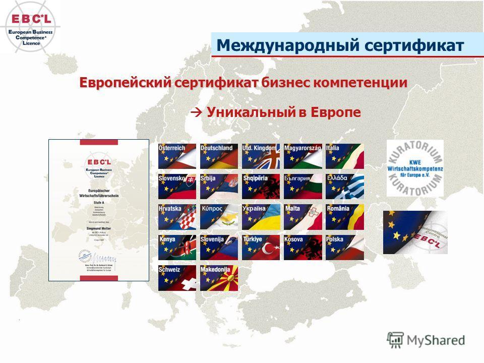 Международный сертификат Европейский сертификат бизнес компетенции Уникальный в Европе