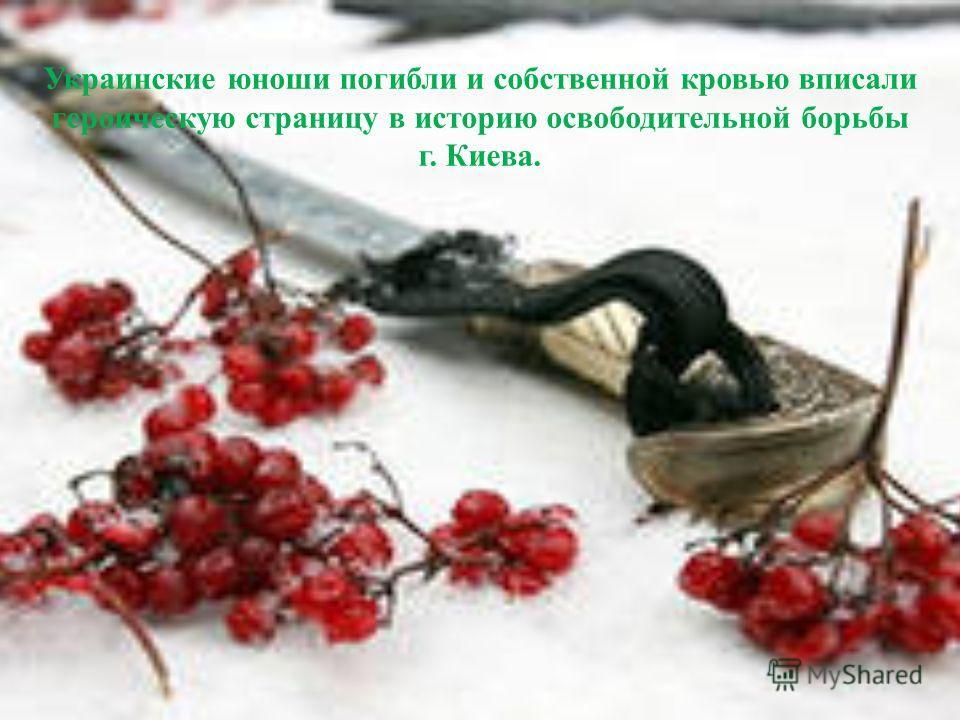Украинские юноши погибли и собственной кровью вписали героическую страницу в историю освободительной борьбы г. Киева.