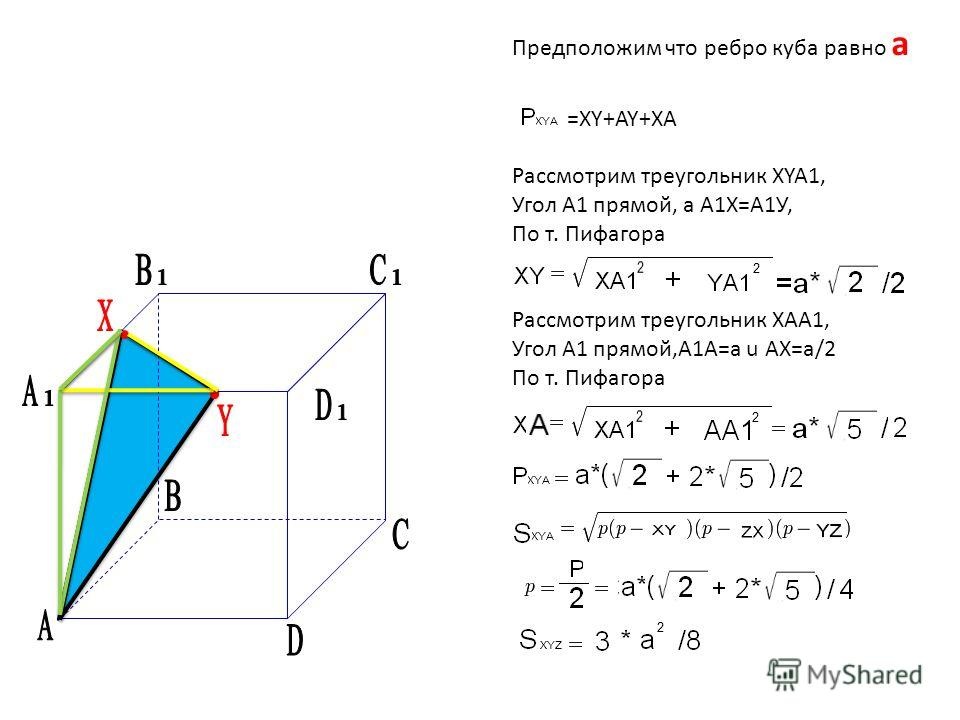 Предположим что ребро куба равно а =XY+AY+XA Рассмотрим треугольник XYA1, Угол А1 прямой, а А1Х=А1У, По т. Пифагора Рассмотрим треугольник XAA1, Угол А1 прямой,А1A=a u AX=a/2 По т. Пифагора