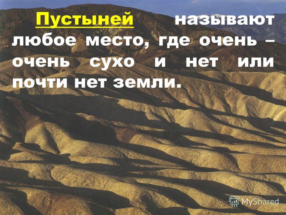 Пустыней называют любое место, где очень – очень сухо и нет или почти нет земли.