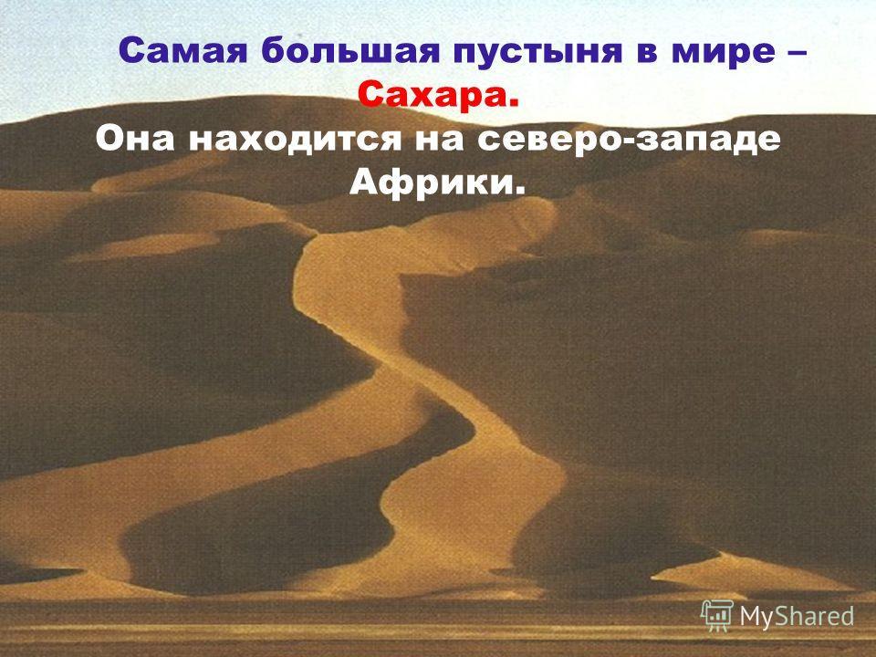 Самая большая пустыня в мире – Сахара. Она находится на северо-западе Африки.