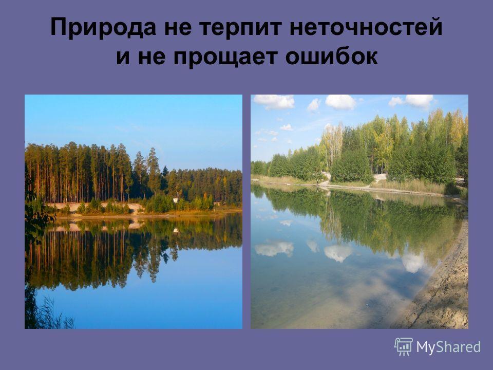 Природа не терпит неточностей и не прощает ошибок