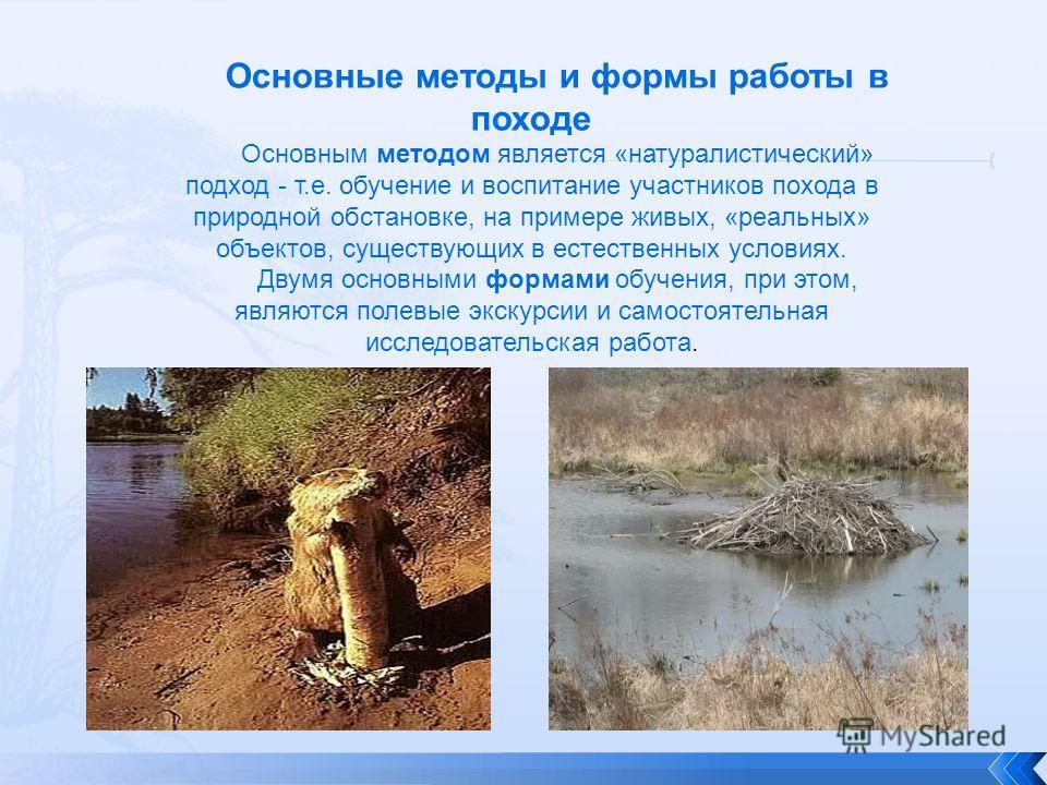 Основные методы и формы работы в походе Основным методом является «натуралистический» подход - т.е. обучение и воспитание участников похода в природной обстановке, на примере живых, «реальных» объектов, существующих в естественных условиях. Двумя осн