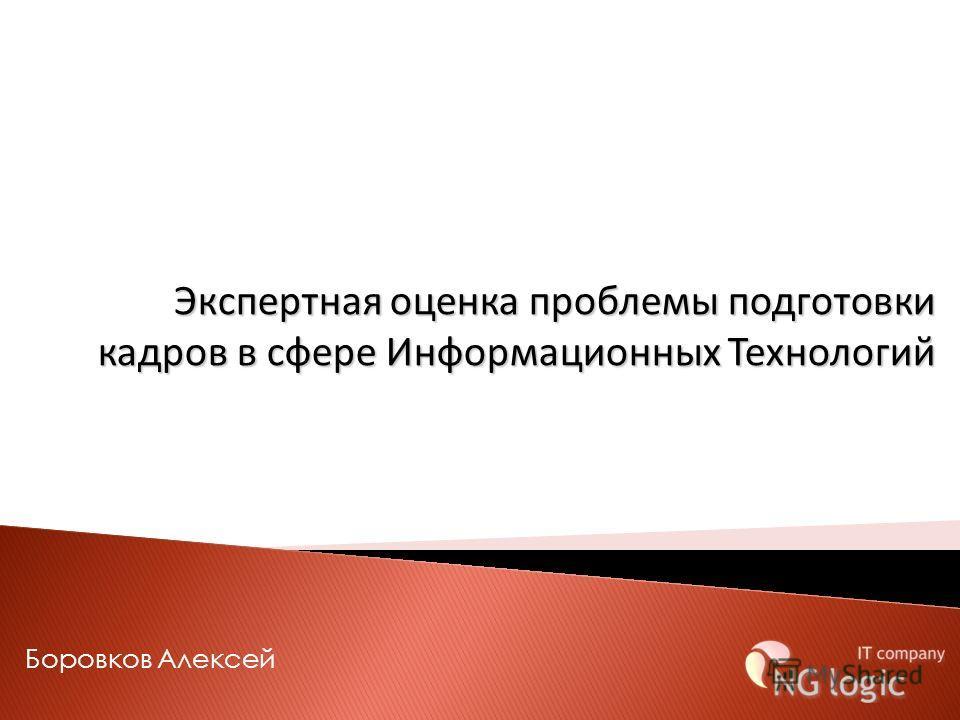 Боровков Алексей Экспертная оценка проблемы подготовки кадров в сфере Информационных Технологий