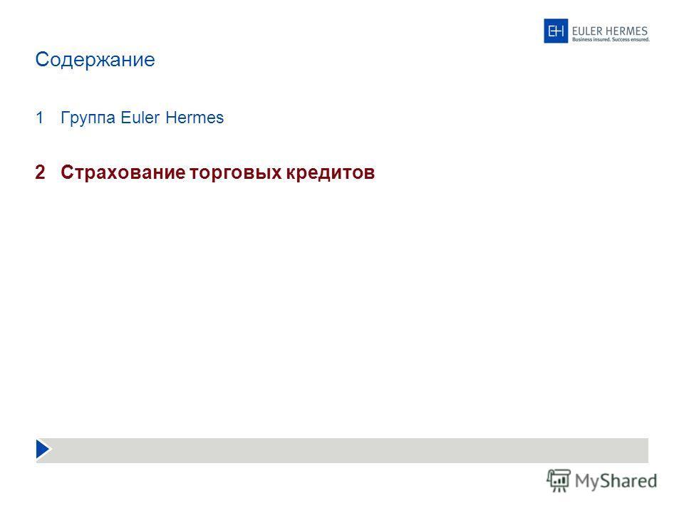 Содержание 1Группа Euler Hermes 2Страхование торговых кредитов
