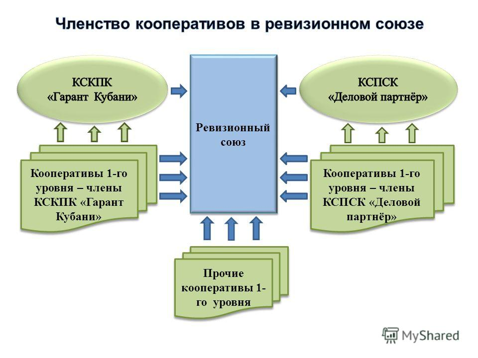 Ревизионный союз Прочие кооперативы 1- го уровня Кооперативы 1-го уровня – члены КСКПК «Гарант Кубани» Кооперативы 1-го уровня – члены КСПСК «Деловой партнёр»