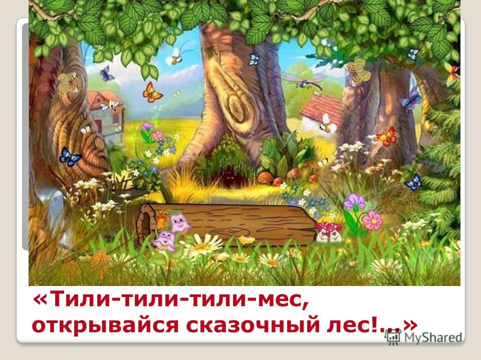 «Тили-тили-тили-мес, открывайся сказочный лес!…»