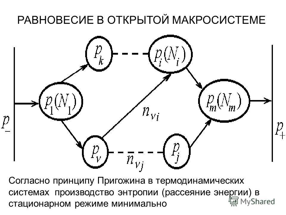 РАВНОВЕСИЕ В ОТКРЫТОЙ МАКРОСИСТЕМЕ Согласно принципу Пригожина в термодинамических системах производство энтропии (рассеяние энергии) в стационарном режиме минимально