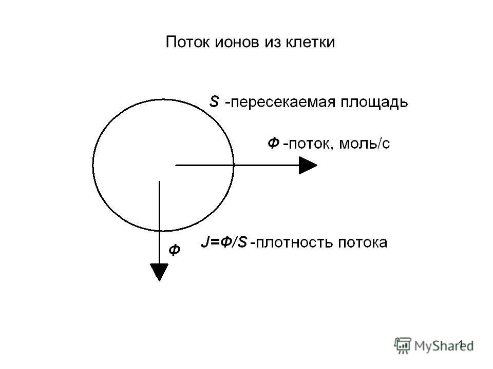 1 Поток ионов из клетки