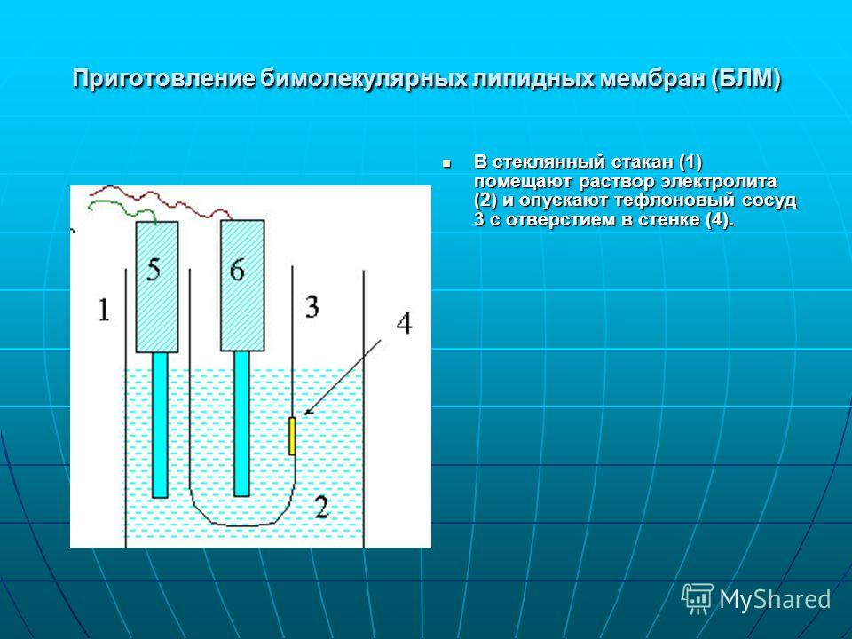 Приготовление бимолекулярных липидных мембран (БЛМ) В стеклянный стакан (1) помещают раствор электролита (2) и опускают тефлоновый сосуд 3 с отверстием в стенке (4). В стеклянный стакан (1) помещают раствор электролита (2) и опускают тефлоновый сосуд